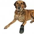 Zaštitne cipelice u slučaju povrede