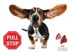 Dog E-walk Premium za kontrolu ponašanja psa