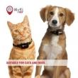 GPS Praćenje pasa i mačakaMyki Pet