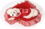 Jastuk za psa MY VALENTINE