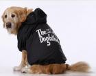 Kabanica za velike pse DogFather