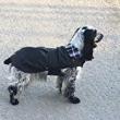 Kaput za psa Paris mini
