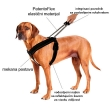 Patento Pet Am sa integrisanim povodnikom
