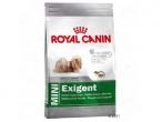 Royal Canin Mini EXIGENT - Hrana za probirljive pse malih rasa
