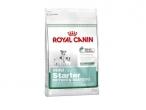Royal Canin Mini Starter - Hrana za štence malih rasa do 2 mesec