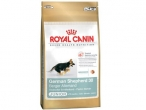 Royal Canin Nemački Ovčar Junior 3/12kg
