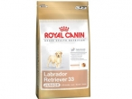 Royal Canin Zlatni Retriver Junior 3/12kg