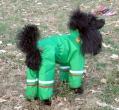 Skafander za psa Max GOROTEX zeleni