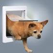 Ugradna vrata za mele pse